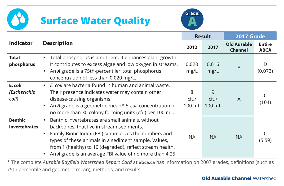 Table - Surface Water Quality - Old Ausable Channel - 2018