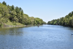 OAC north from Store Bridge in Pinery